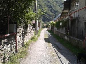 ფასანაურის ქუჩა